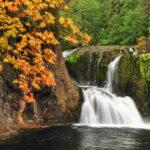 Best Fall Hikes in NW Oregon & SW Washington