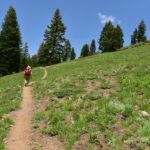 Dutchman Peak and Observation Peak